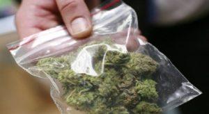 25 enne arrestato nuovamente per detenzione di marijuana