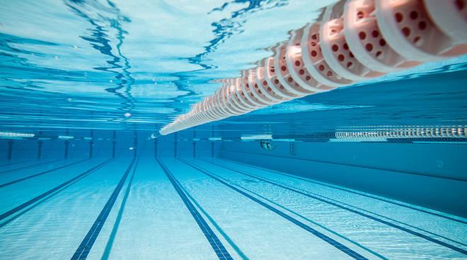 Andare in piscina al Delphinia è gratis, ecco le modalità di partecipazione