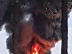 Nuovo incendio ad Afragola, fumo visibile anche da Caivano