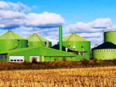 energia biomassa